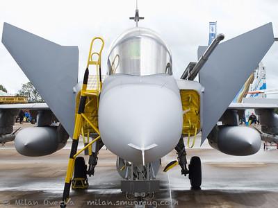JAS 39D Grippen, Swedish Air Force